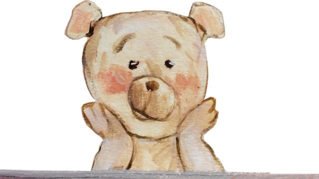 Flapjax-the-bear